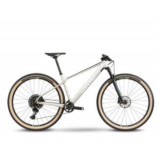 BMC TWOSTROKE 01 ONE - X01 Eagle Mix kalnų dviratis / Arctic Silver Prisma