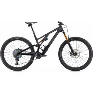 S-WORKS STUMPJUMPER EVO kalnų dviratis / Gloss Carbon