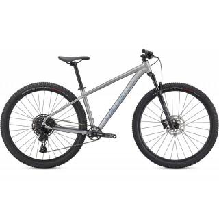 SPECIALIZED ROCKHOPPER EXPERT 29 kalnų dviratis / Silver Dust
