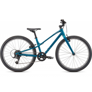SPECIALIZED JETT 24 vaikiškas dviratis / Gloss Teal Tint - Flake Silver