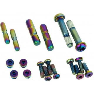 SRAM G2 Ultimate/RSC - Rainbow stabdžių rankenėlės varžtai